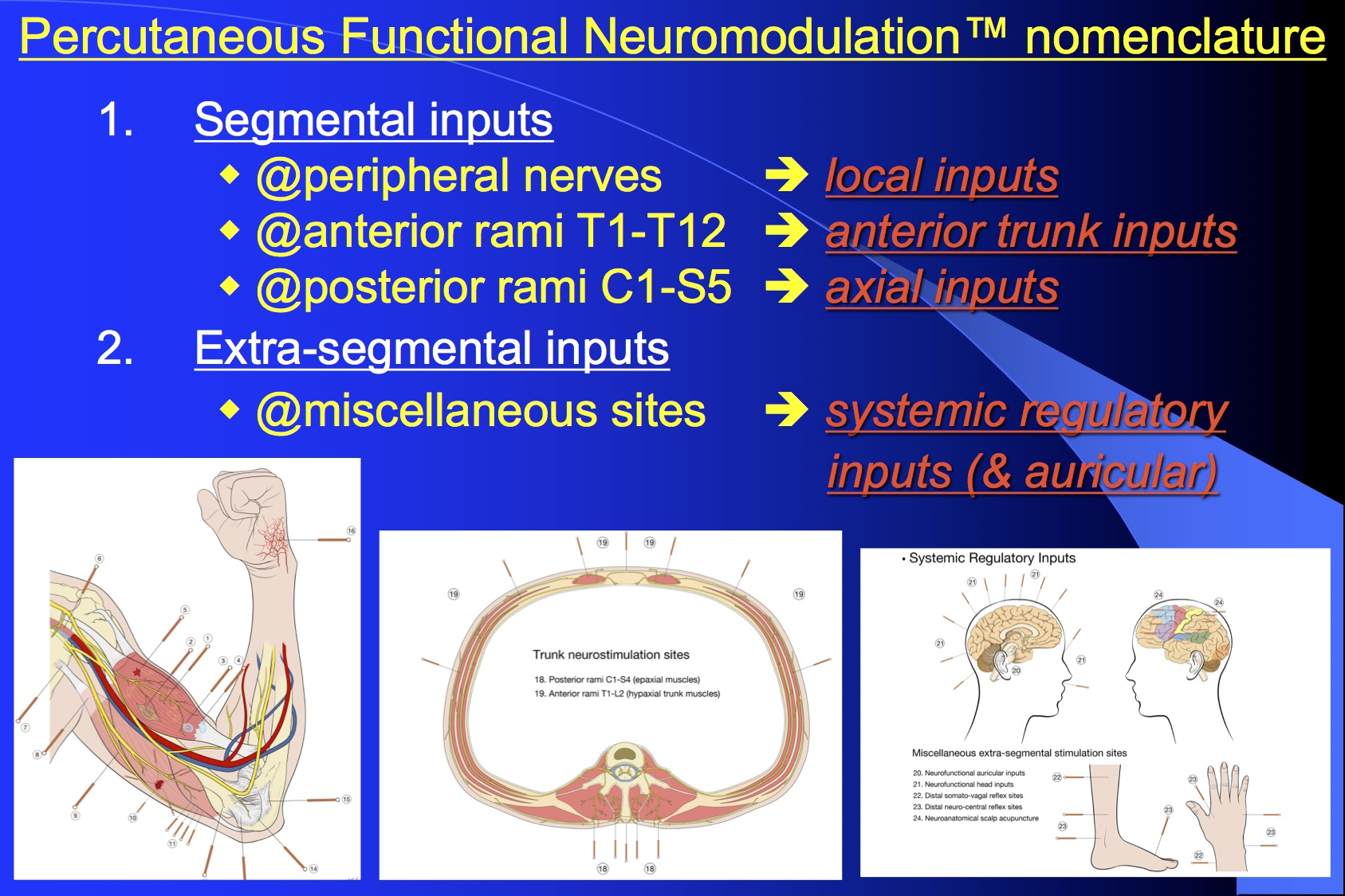 Percutaneous Functional Neuromodulation™ Nomenclature